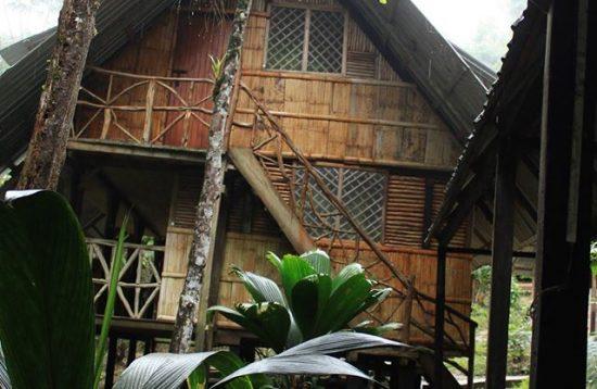 Eco-Dreams lodge
